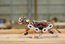 Dünyanın en küçük robotik kedisi: Nybble