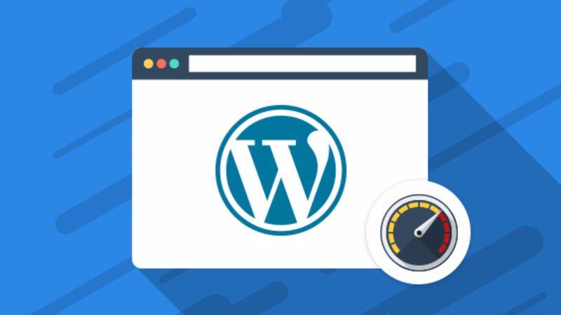 WordPress Site Hızı Eklentileri